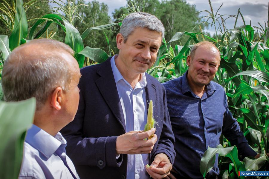 Приезд Тонких 310719 кукуруза1