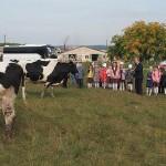 Школьники на ферме с. Черное, экскурсия 13.09.19