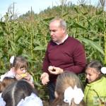 Школьники на кукурузном поле во время экскурсии 13.09.19